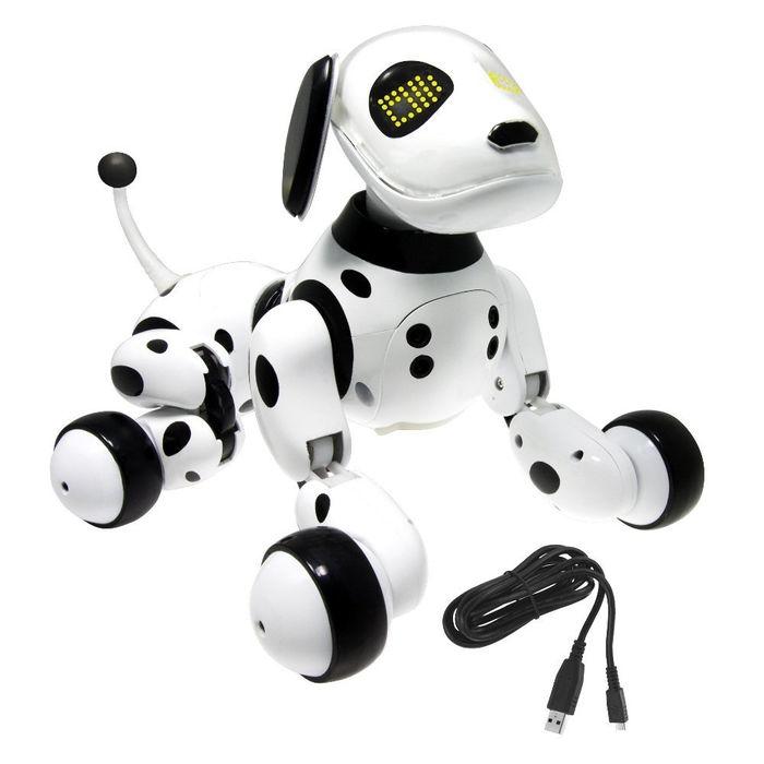 zoomer-mascota