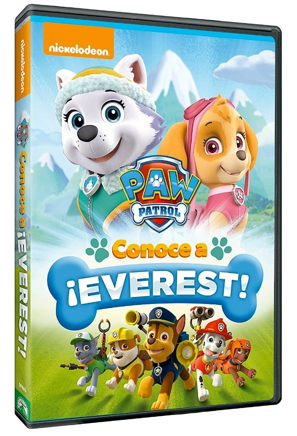 Paw Patrol Everest And Skye Coloring Page Color
