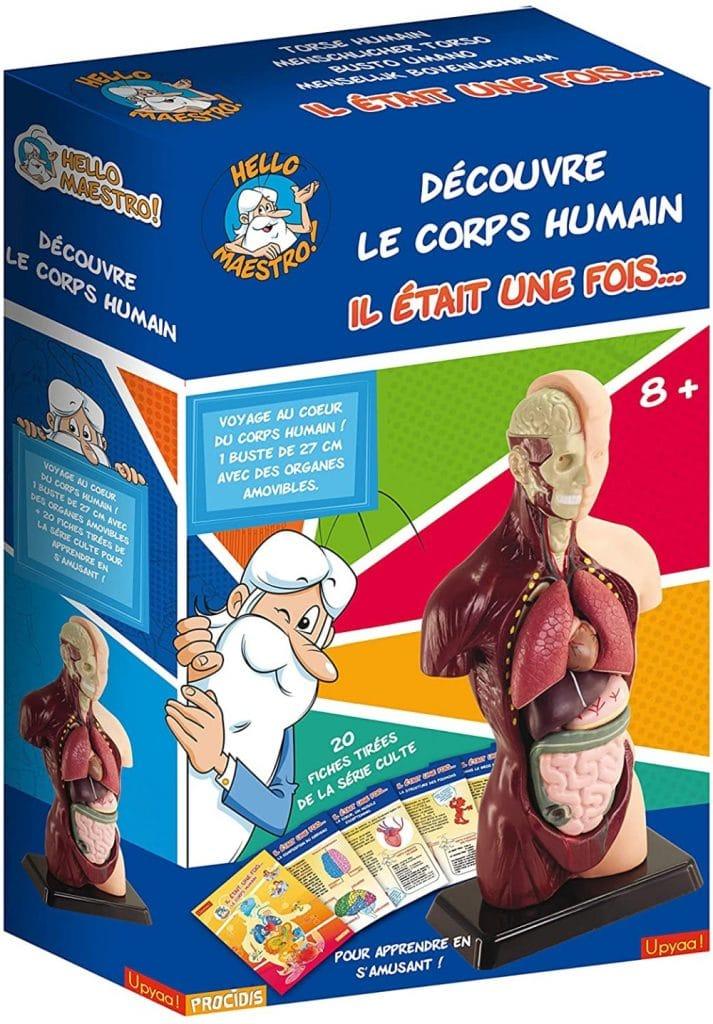 El Cuerpo humano juego